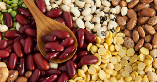 Reasons Beans Can Boost Your Brain Power