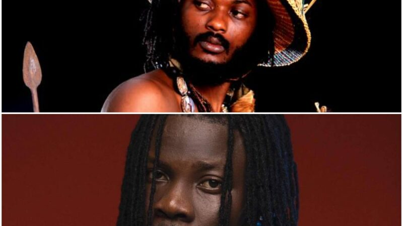Don't Like Anything Of Mine – Iwan Warns Stonebwoy